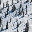Mt Aspen壁紙の画像(壁紙.com)