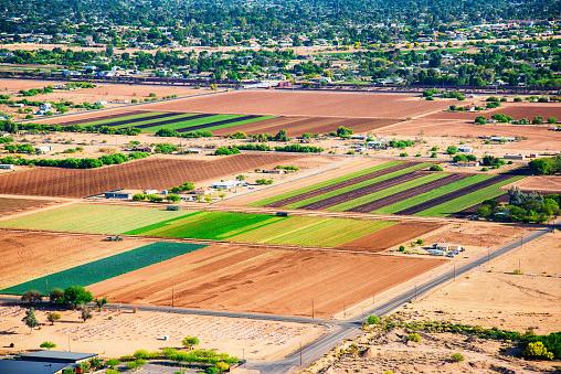 Plowed Field「Farmland in Arid Arizona Climate」:スマホ壁紙(4)