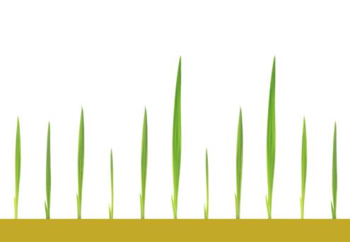 Digital Composite「Green shoots」:スマホ壁紙(6)
