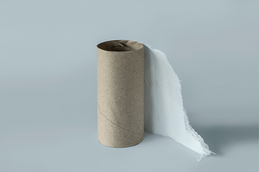 Toilet Paper「Out of toilet paper」:スマホ壁紙(18)