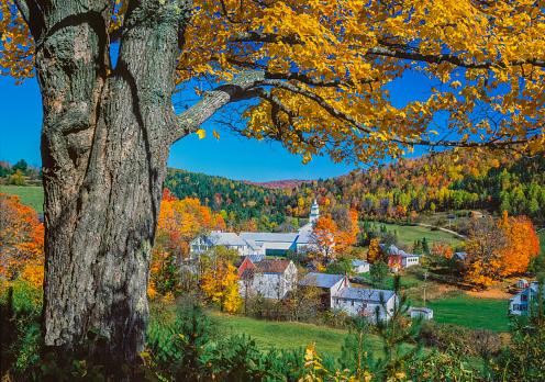 グリーン山脈「雄大な秋の砂糖メープルは、バーモント州イーストトップシャムのニューイングランド村をフレーム」:スマホ壁紙(9)