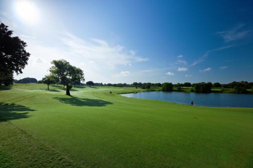 Agricultural Field「Golf Fields」:スマホ壁紙(2)