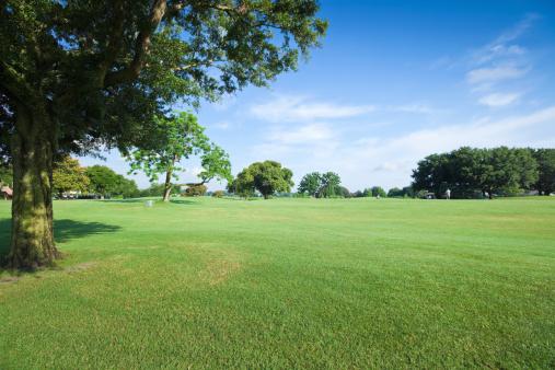 Natural Parkland「Golf Fields」:スマホ壁紙(3)