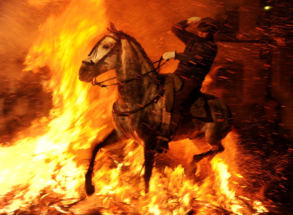 Horse「Las Luminarias de San Anton Festival」:写真・画像(15)[壁紙.com]