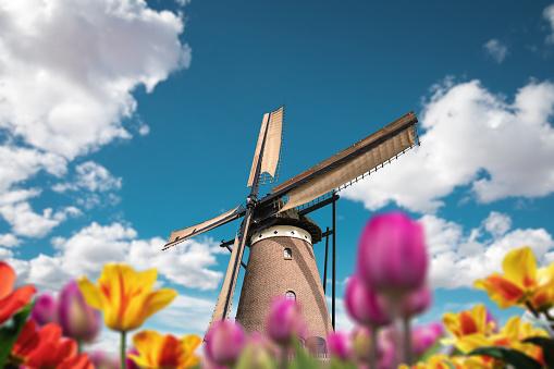Mill「Windmill In Netherlands」:スマホ壁紙(12)