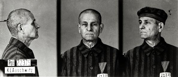 Identity「Auschwitz Mugshot」:写真・画像(19)[壁紙.com]