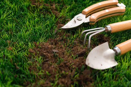 Planting「Garden Hand Tools」:スマホ壁紙(12)