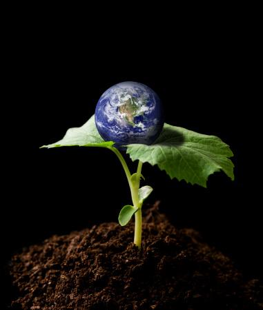 Planting「Planet earth」:スマホ壁紙(3)