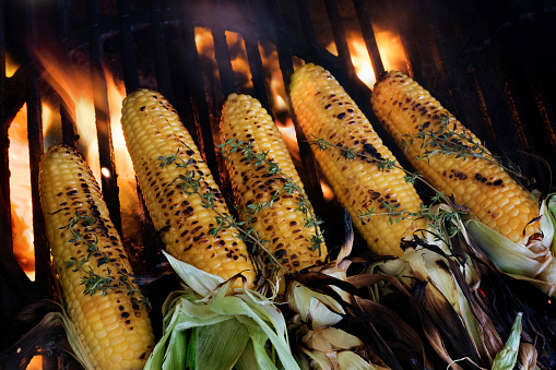 Barbecue Grill「Corn on cob covered with thyme on barbeque」:スマホ壁紙(15)