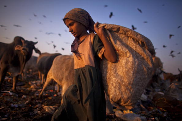 Number 100「Indian Rag Pickers Forage For Recyclables At Delhi Landfill Site」:写真・画像(7)[壁紙.com]