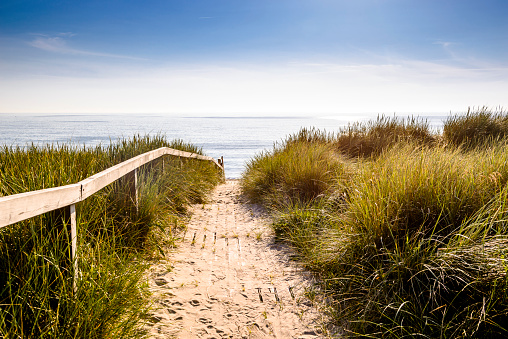 Boardwalk「Germany, Schleswig-Holstein, Sylt, path through dunes」:スマホ壁紙(5)