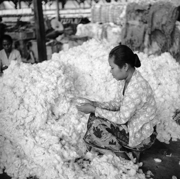 Material「Cotton Pile」:写真・画像(19)[壁紙.com]