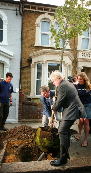 Tree「Boris Johnson Plants The First Of Ten Thousand More Street Trees」:写真・画像(6)[壁紙.com]
