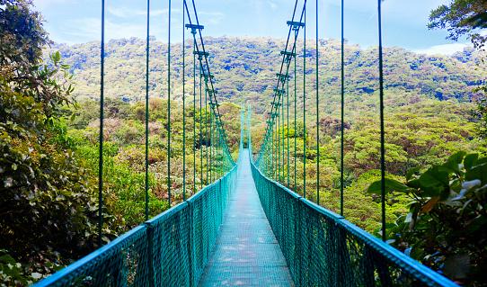 Costa Rica「Suspension bridge in rain forest, Costa Rica」:スマホ壁紙(14)