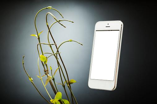 Twig「Creepers  looking at smartphone」:スマホ壁紙(5)
