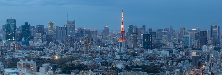 Tokyo Tower「Panorama of the skyscrapers of central Tokyo and the iconic Tokyo tower, Japan's capital city.」:スマホ壁紙(2)