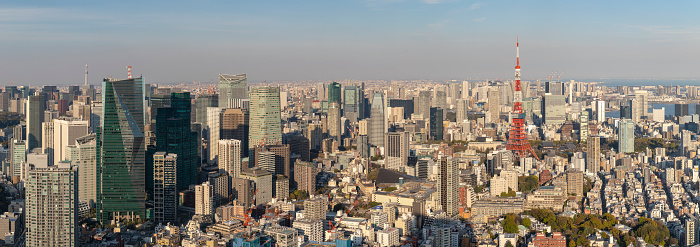 Tokyo Tower「Panorama of the skyscrapers of central Tokyo and the iconic Tokyo tower, Japan's capital city.」:スマホ壁紙(5)