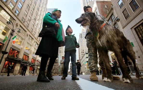 Daniel Gi「New York City Hosts Annual St. Patrick's Day Parade」:写真・画像(1)[壁紙.com]