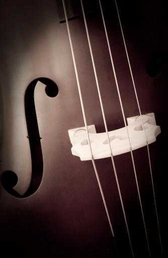 Bass Instrument「Contrabbass」:スマホ壁紙(14)