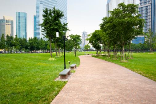 Public Park「footpath」:スマホ壁紙(2)