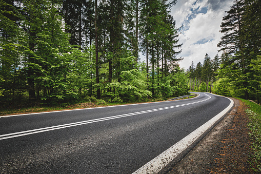 Pine Woodland「panoramic mountain road (HDRi)」:スマホ壁紙(18)