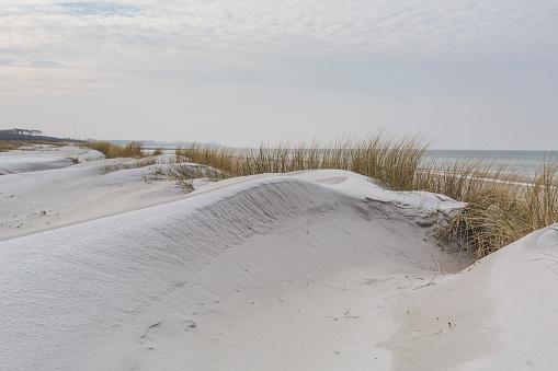 Peninsula「Germany, Mecklenburg-Western Pomerania, Darss, Baltic Sea, West beach, dune」:スマホ壁紙(10)