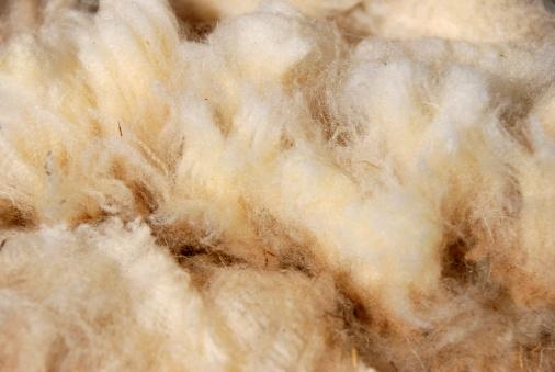 Spinning「raw sheep wool」:スマホ壁紙(12)