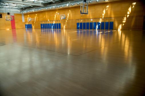 Wall Bars「Empty Gymnasium Sports Centre Hall in Morning Sun」:スマホ壁紙(4)