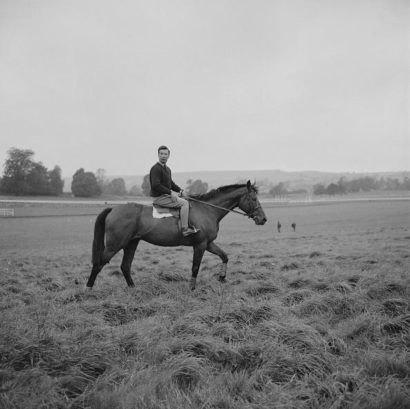 Racehorse「Dick Francis riding a horse」:写真・画像(13)[壁紙.com]