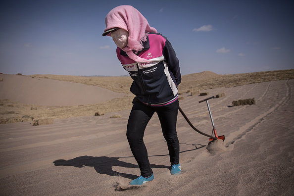 Planting「China Strives To Combat Desertification For Sustainable Development」:写真・画像(19)[壁紙.com]