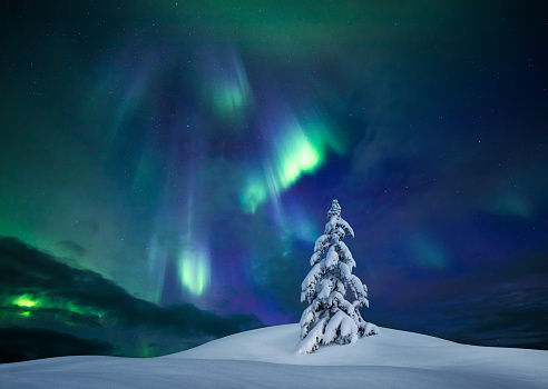 Geomagnetic Storm「Winter Lights」:スマホ壁紙(6)