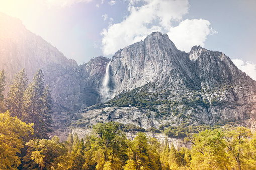 Dramatic Landscape「waterfall and mountains with foreground trees」:スマホ壁紙(18)