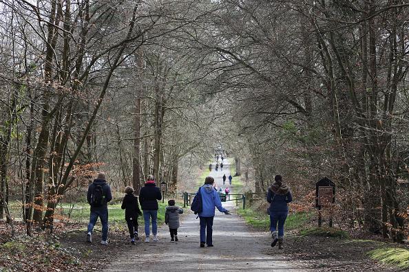 歩く「National Trust To Allow Free Entry To Its Parks And Gardens During Coronavirus Outbreak」:写真・画像(9)[壁紙.com]