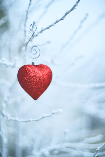 Valentine's Day - Holiday「Heart shaped Christmas ornaments on snowy branches」:スマホ壁紙(5)