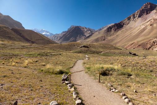 アコンカグア山「Path in los Horcones valley, Aconcagua, Argentina」:スマホ壁紙(15)