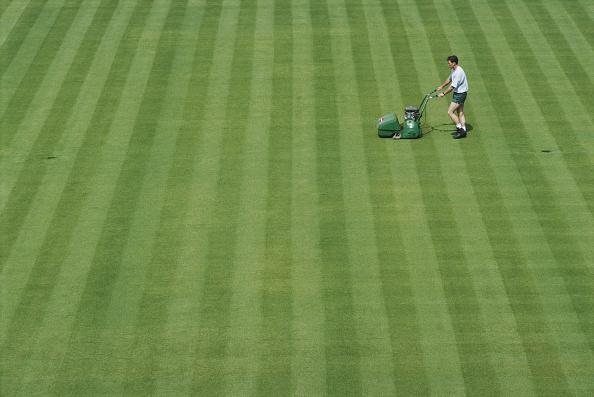 Grass「Wimbledon Lawn Tennis Championship」:写真・画像(0)[壁紙.com]