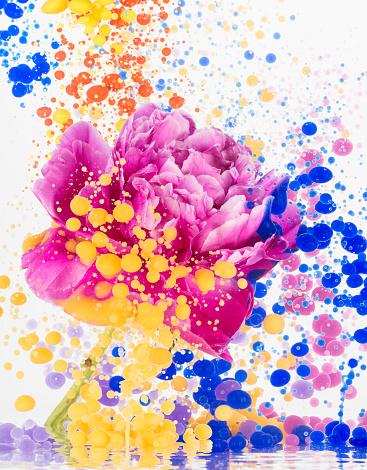 Art「Floating flower and color oil」:スマホ壁紙(2)