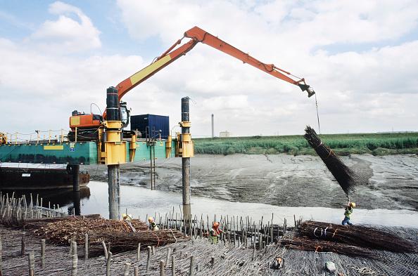 Construction Vehicle「Laying faggots for retaining mud as embankment erosion protection on the Dartford Creek on the thames estuary, Dartford creek」:写真・画像(3)[壁紙.com]