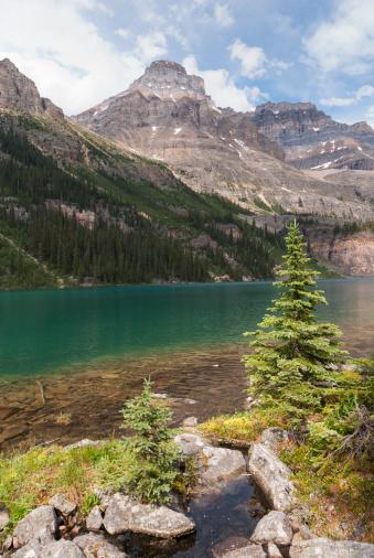 Yoho National Park「Lake O'Hara with Mont Huber」:スマホ壁紙(16)