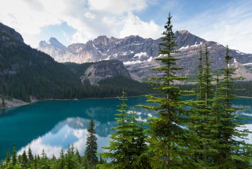 Yoho National Park「Lake O'Hara with Mount Shaffer」:スマホ壁紙(9)