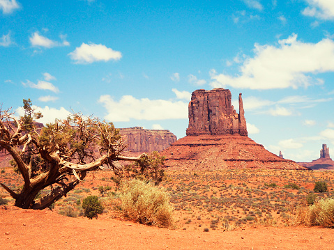 Sedona「Monument Valley panorama - tribal navajo National park」:スマホ壁紙(4)