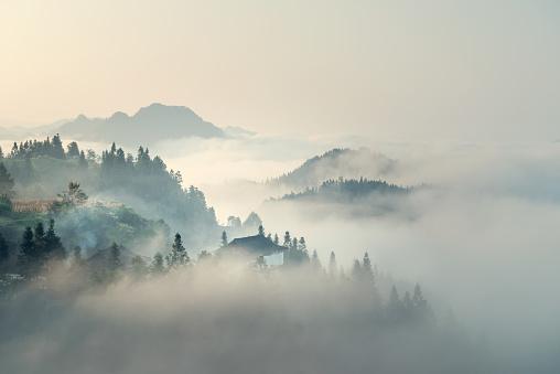 Cloud - Sky「The morning mist」:スマホ壁紙(13)