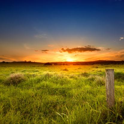 Bush Land「Last light over field」:スマホ壁紙(16)