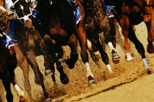 Horse「Horse Race」:スマホ壁紙(2)