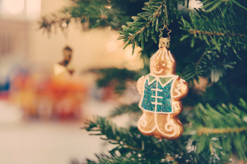 Gingerbread Cookie「Germany, Bonn, Christmas decoration, gingerbread man on a tree」:スマホ壁紙(6)