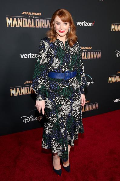 "The Mandalorian - TV Show「Premiere And Q & A For ""The Mandalorian""」:写真・画像(18)[壁紙.com]"