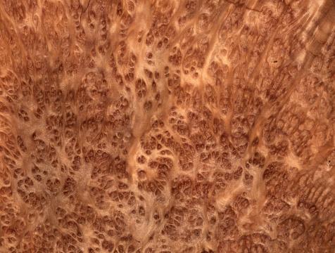 Lumber Industry「Giant Sequoia wood background」:スマホ壁紙(4)