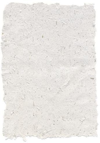 Mill「Elephant dung paper (South Africa)」:スマホ壁紙(0)