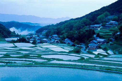 Satoyama - Scenery「Rice Paddies in Nara Prefecture」:スマホ壁紙(15)