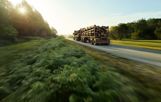 Lumber Industry「South Africa, Tsitsikamma National Park, Garden Route, wood transport」:スマホ壁紙(11)